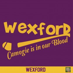 Wexford Camogie is in our Blood