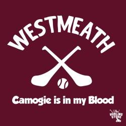 westmeath100