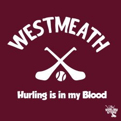 westmeath28
