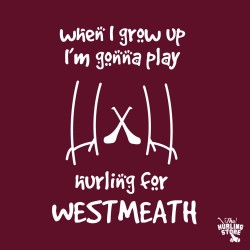 westmeath36