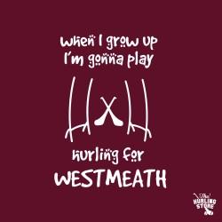 westmeath59