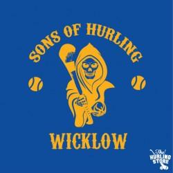 wicklow20