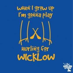 wicklow30