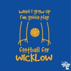 wicklow6