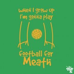 meath15