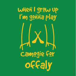 offaly11