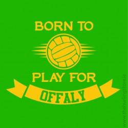 offaly69