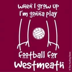 westmeath4