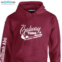 galway201711